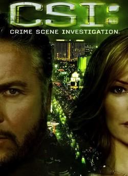 CSI: Місце Злочину Лас-Вегас (Сезон 7)