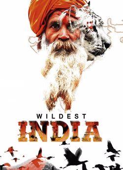 Дивовижна Індія