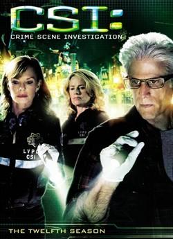 CSI: Місце Злочину Лас-Вегас (Сезон 12)