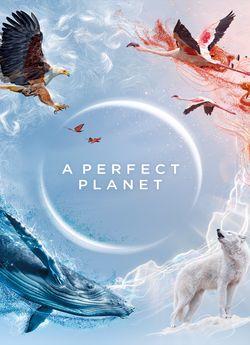 Досконала планета