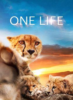 Одне життя