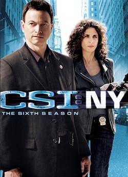CSI: Місце злочину Нью-Йорк (Сезон 6)