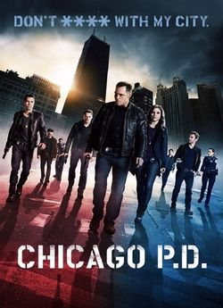 Поліція Чикаго (Сезон 1)