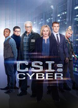 CSI: Кіберпростір (Сезон 1)
